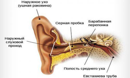 Причины появления серной пробки в ушах